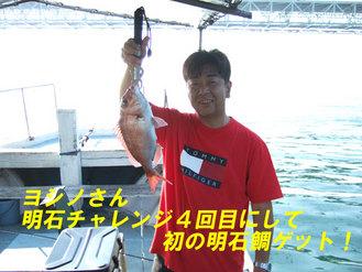 ヨシノさんの鯛