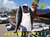 メジロ鯛シーバス!!
