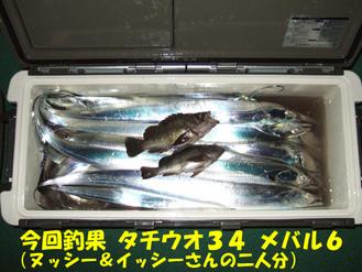 AKI3釣果