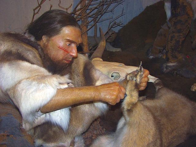 800px-Neandertaler-im-Museum