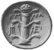 Silphium