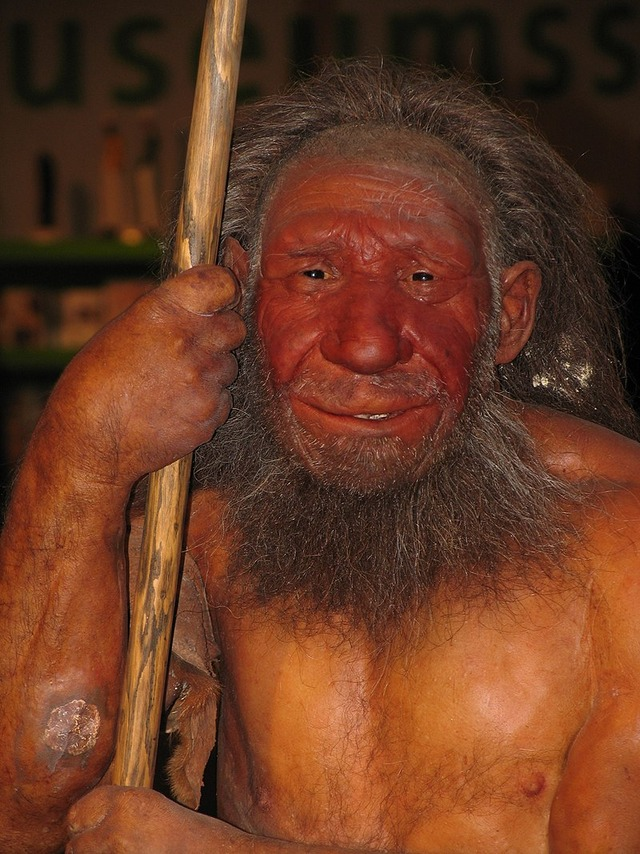 800px-Neandertaler_reconst
