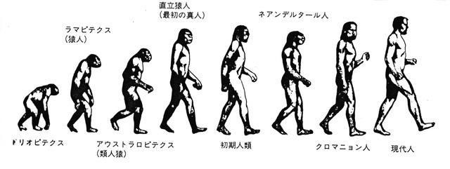 人類歴史年表|人類|ヒト|歴史|誕生|進化|地 …