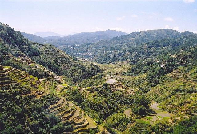 800px-Rice_Terraces_Banaue