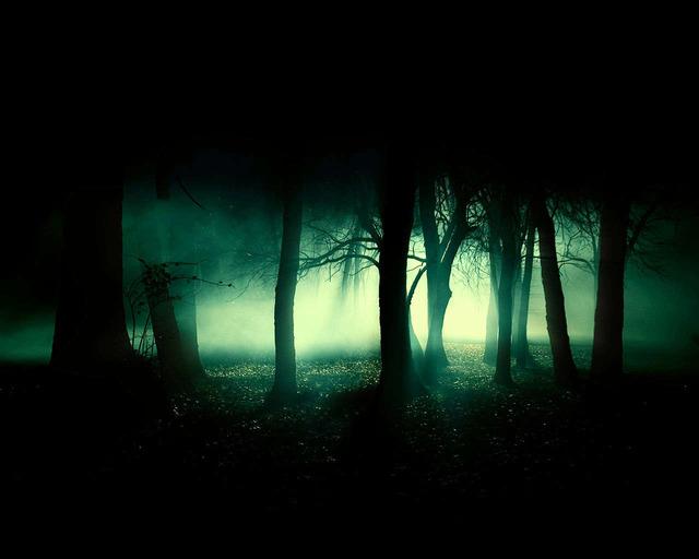 死ぬ程洒落にならない怖い話を集めてみない?『暗闇の一本道に警備員』