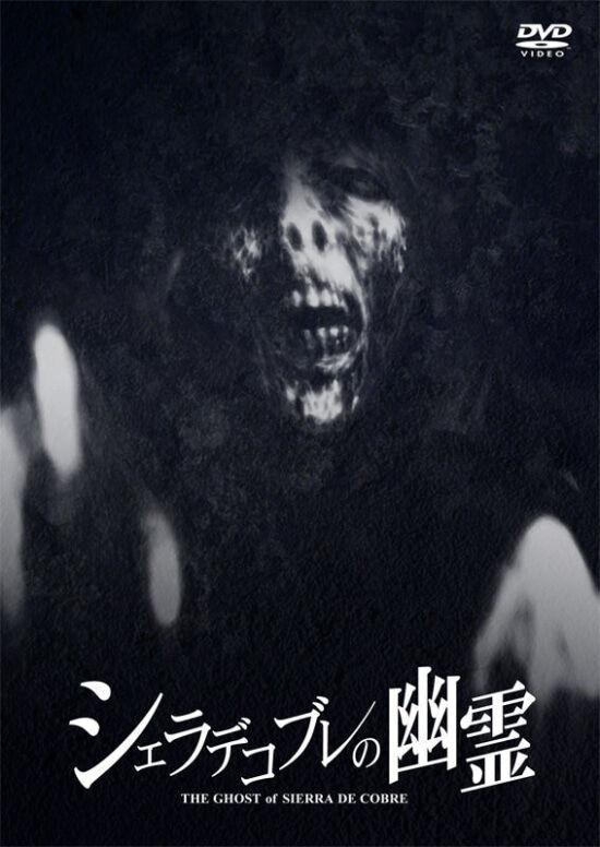 本当に怖いホラー映画あるか?