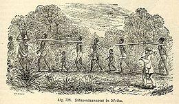 260px-AfricanSlavesTransport
