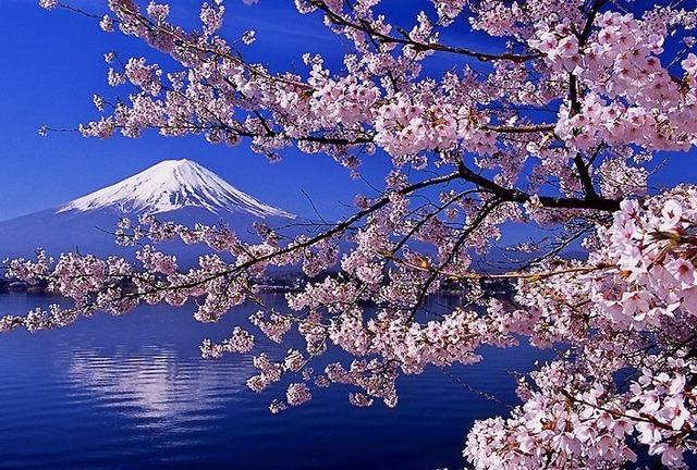 海外色々行くほど日本って良い国だと思うよな