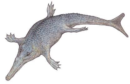 ティラノサウルスって13mもある...