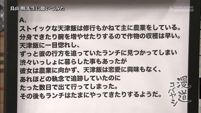 20130326021722_190_5