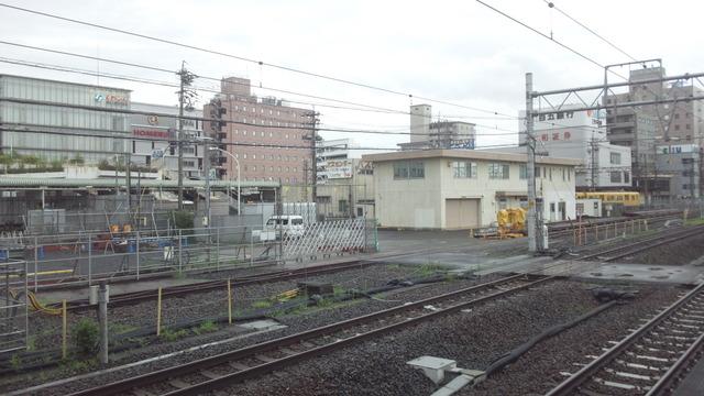 DSC_0030 (2)