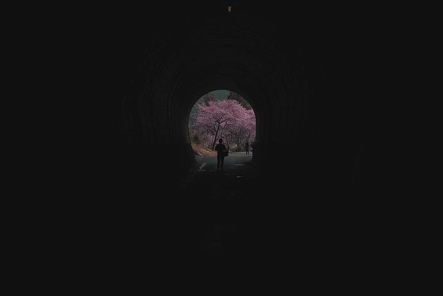 河津桜1 (3)-s