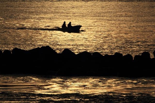 浜名湖の朝3-s