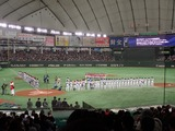 東京ドーム1800