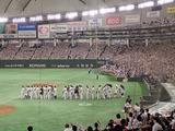 東京ドーム1795