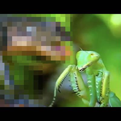 【FGO】JKアルトリアオルタがマスターを挑発して足コキ搾精したらHな教育的指導されて中出しセックス!