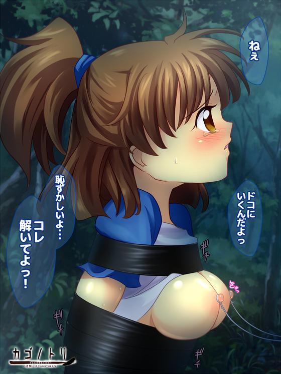 【( ゚∀゚)o彡゚おっぱい!おっぱい!】おっぱいがエロすぎる二次エロ画像wwww