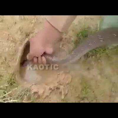 【エロ画像】くっさい精液ぶっかけられまくってる美少女達のエロ画像wwwpart69