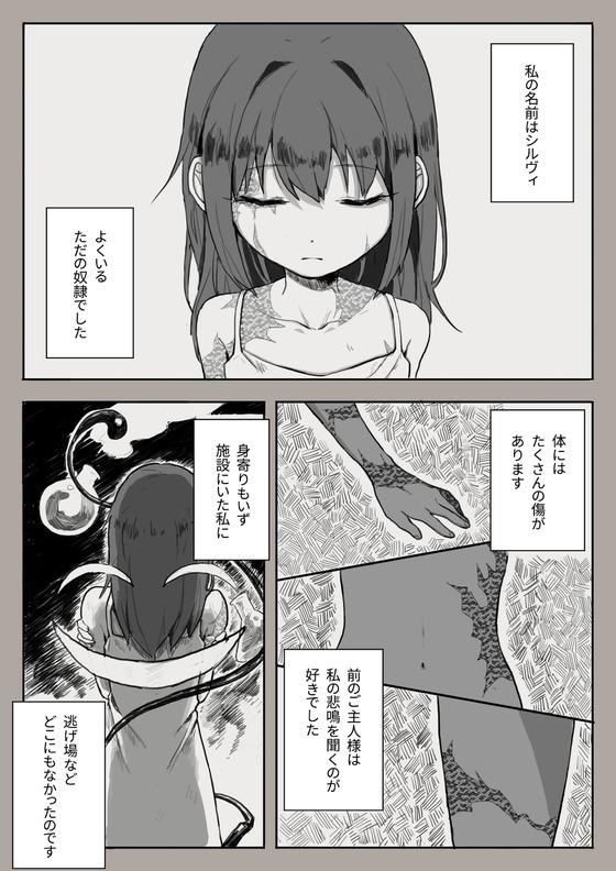 奴隷のシルヴィちゃんに全力で優しくしたくなるエロ漫画(*´ω`*)