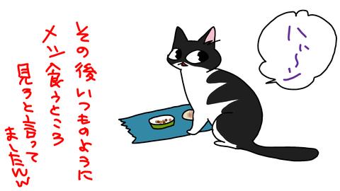 sketch-1560874483022