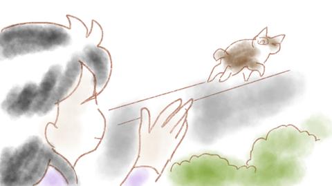 sketch-1542592408014
