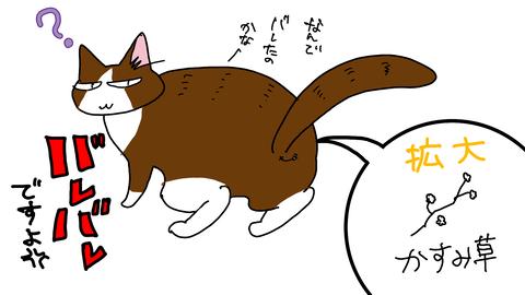 sketch-1584182973786