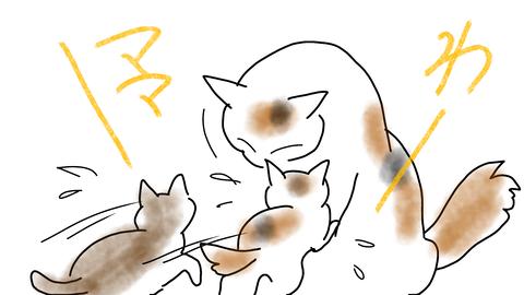 sketch-1593925971331