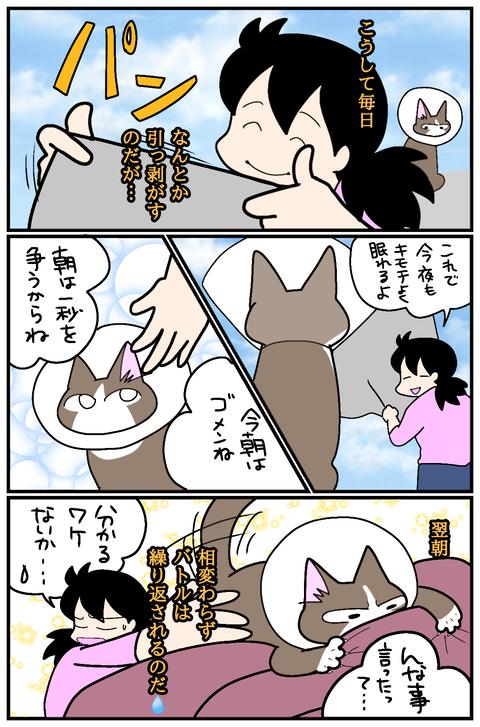 無題155 (1)