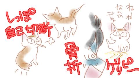sketch-1597538989694