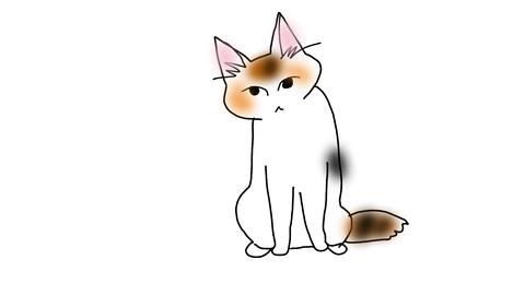 sketch-1593214829396