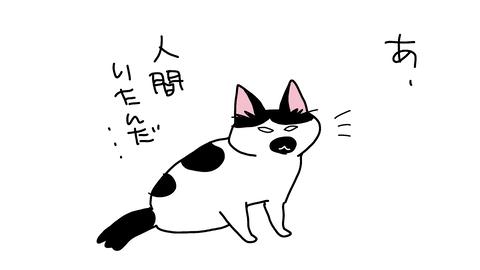 sketch-1594726324798