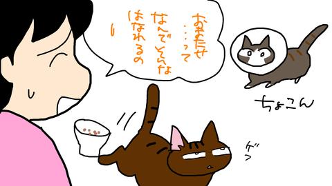 sketch-1540865947585