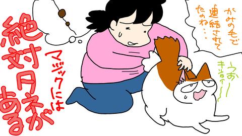 sketch-1584182294872