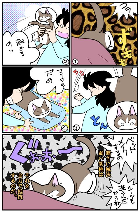 無題154 (1)