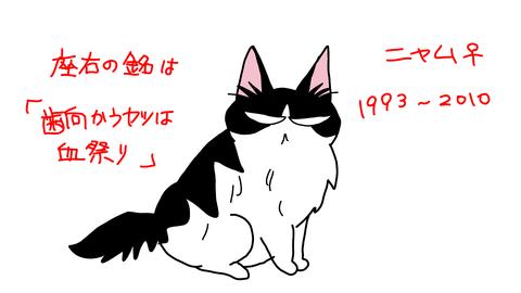 sketch-1548904280172