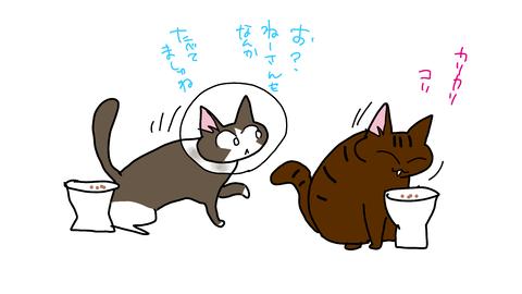 sketch-1590627490077