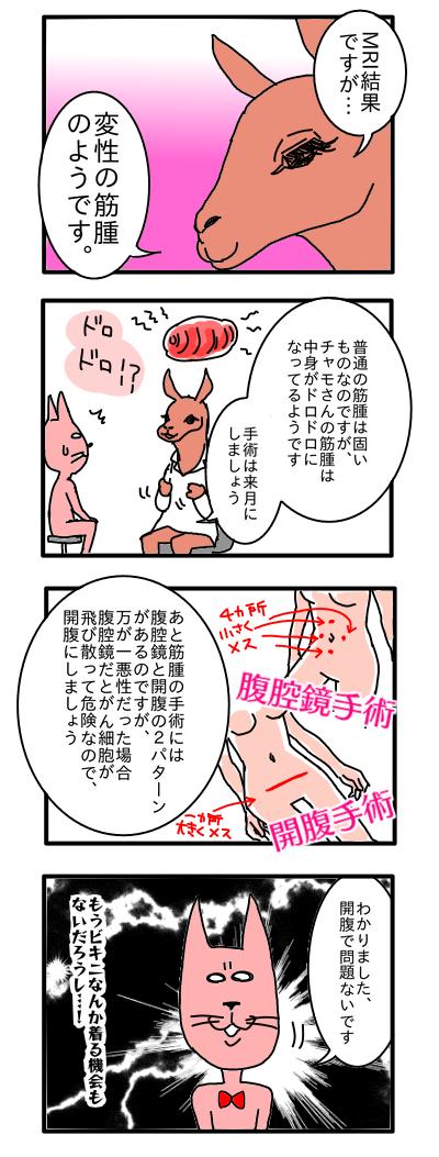 子宮 筋腫 手術 ブログ