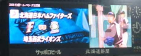 080325埼玉西武戦