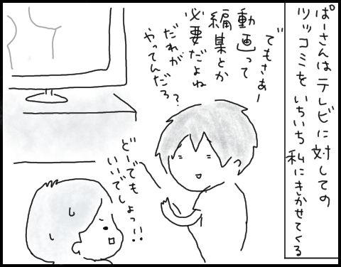 ぱーさんとテレビ