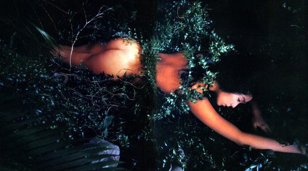 飯島直子2美乳画像 (2)