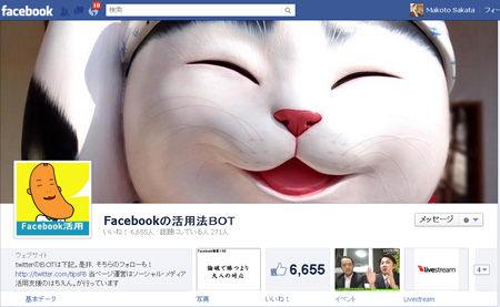 FBpageNew1