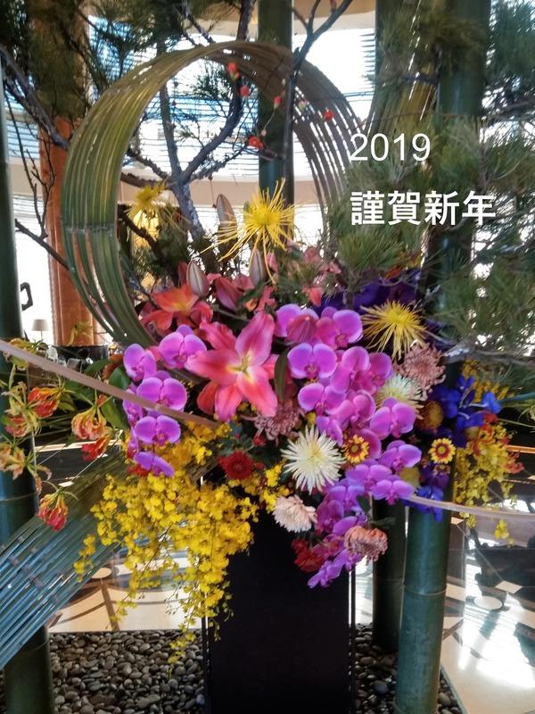 IMG_20190101_120021 (1)