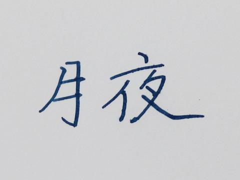 セーラー鳥獣戯画 (8)