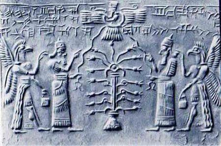 人類はアヌンナキがDNA改造して創った
