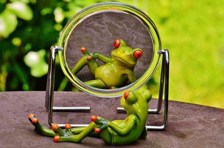 「せや! 鏡に向かって話かけたろ!」