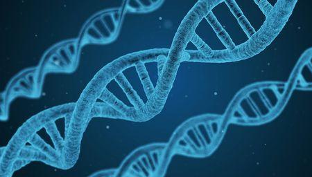 遺伝子操作