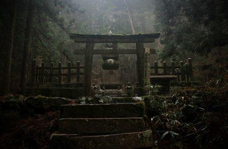 マンドラゴラのいる神社