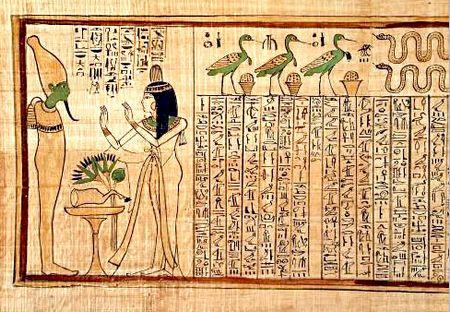 古代エジプト学部専攻ワイ