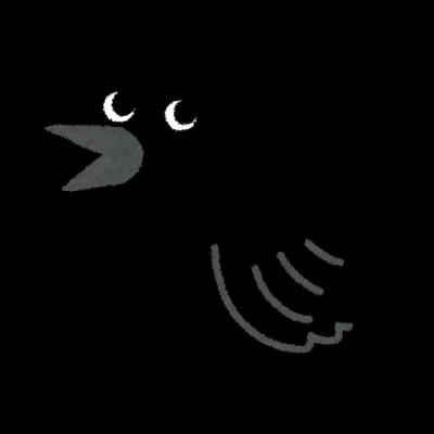 color11_black_crow