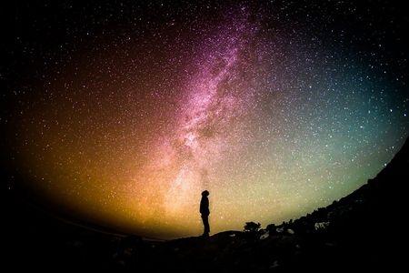 宇宙って生物なんじゃないか